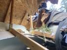 tree-damaged-roof-repair-19