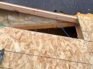 tree-damaged-roof-repair-2