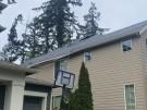 tree-damaged-roof-repair-26
