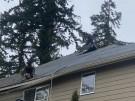 tree-damaged-roof-repair-30