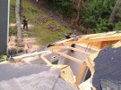 tree-damaged-roof-repair-8