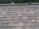 fallen-tree-roof-repair-1