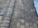 fallen-tree-roof-repair-17