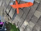 fallen-tree-roof-repair-2