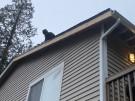 fallen-tree-roof-repair-25