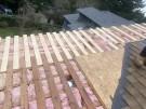 fallen-tree-roof-repair-29