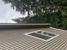 fallen-tree-roof-repair-30