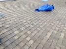 fallen-tree-roof-repair-5